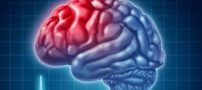 دانستنی راجب عوامل آسیب رسان به مغز