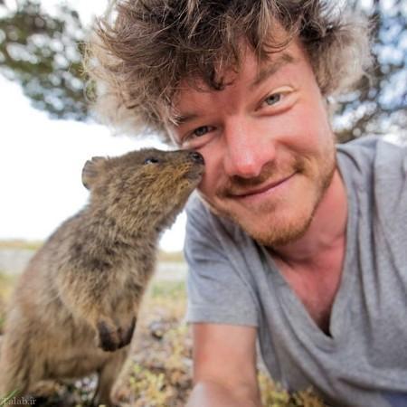 سلفی دیدنی از حیوانات با عکاس آمریکایی (+عکس)