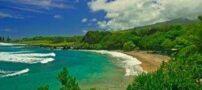سفری به جزیره آدمخوارها + عکس