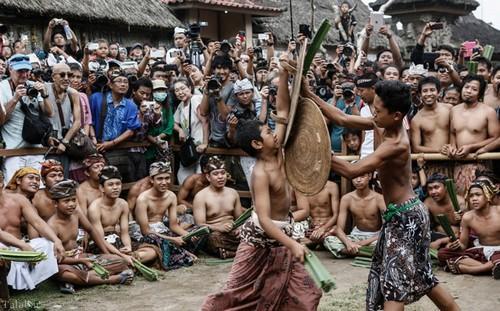جشنواره ای عجیب جنگ با شاخه های خاردار ( تصویری)