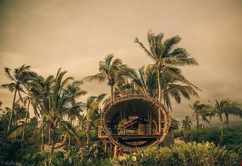 خانه زیبای جنگلی در مکزیک (+عکس)