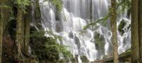 آبشار های زیبا و کمیاب در شهرهای جنوبی ایران