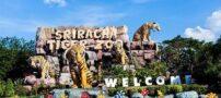 معرفی قویترین سایت تور تایلند و جاذبههای گردشگری تایلند
