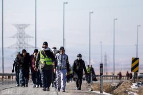 تصاویر زیبا از پیاده روی زائران به سمت حرم امام رضا (ع)