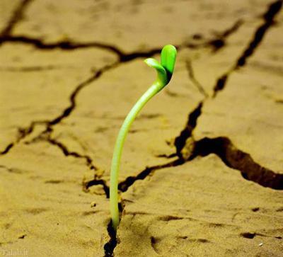 جمله های سرشار از انرژی و امید به زندگی