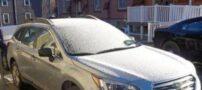 نجات پیرزن یخزده درون ماشین + عکس