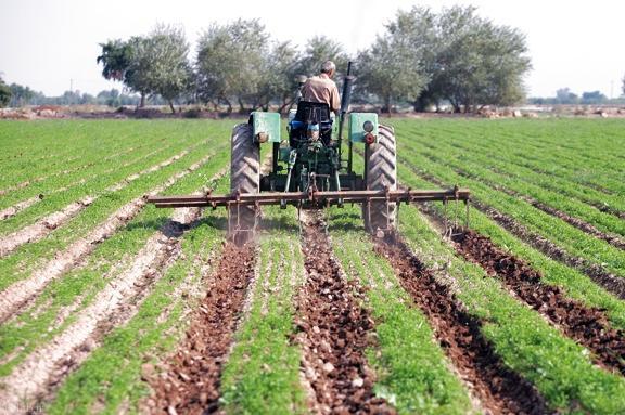 داستان پندآموز یک کشاورز