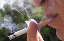 آمار اثرات مضّر سیگار بر سلامتی