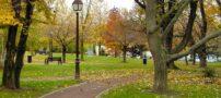 شعری رمانتیک و عاشقانه در پارک