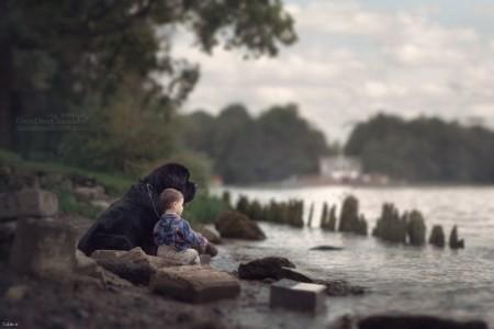 دوستی سگ ها با کودکان به روایت تصویر