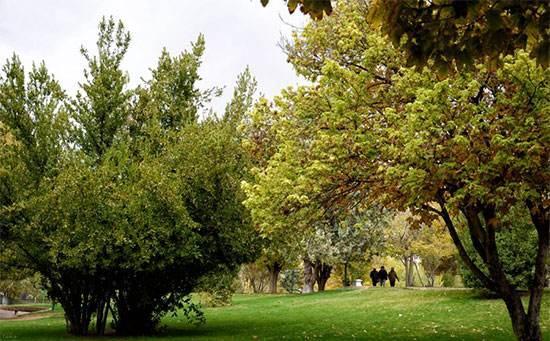 آشنایی با سرگرمی و جاهای دیدنی شیراز ویژه نوروز 96