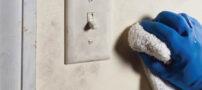 سری راحت راهکار مناسب برای لکه برداری از روی دیوار