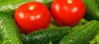 در غذایتان از گوجه و خیار استفاده نکنید که ضرر دارد !