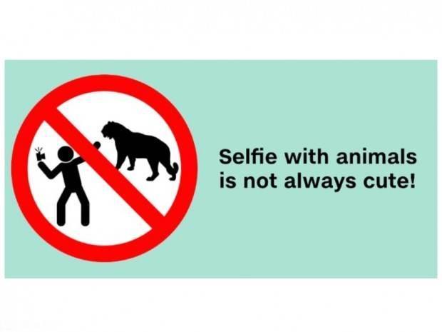 احمقانه ترین سلفی های دنیا + عکس | در چه جاهایی نباید سلفی بگیریم !!؟