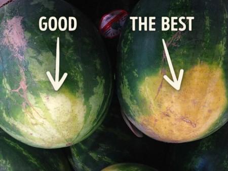 هندوانه شیرین و آبدار قرمز چه نشانه هایی دارد؟