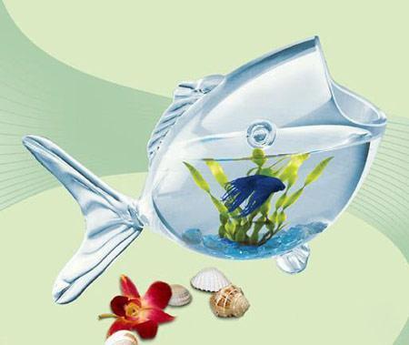 خلاقیت های جالب برای تزیین تنگ ماهی هفت سین