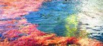 تصاویر دیدنی از دریاچه ی عجیب پنج رنگی در کلمبیا