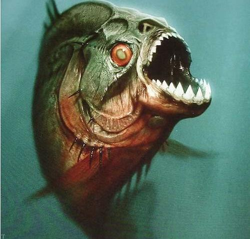 ترسناک ترین ماهی در دریاهای آمازون (+عکس)