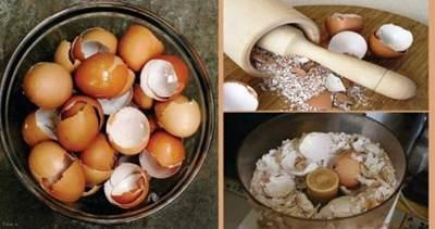 با پوست تخم مرغ خود را درمان کنید !!