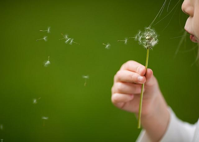 نوشته های زیبا در مورد آرزو کردن های گوناگون