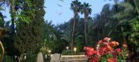 معرفی باغ گلشن در طبس ، زیبایی خدادادی
