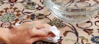 ایده های مناسب برای پاک کردن لکه بر روی فرش