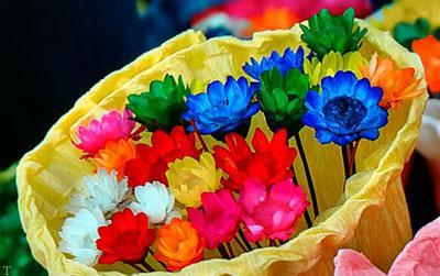 روش جالب برای رنگ آمیزی کردن گل ها در خانه