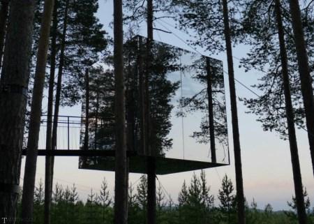 کلبه های کوچک بر روی درختان زیبا (+تصاویر)