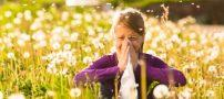 در بهار با این روش ها آلرژی را شکست بدهید !