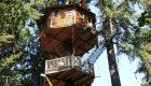 خانه هایی که به طرز وحشتناکی بر روی بوته درختان قرار دارند (+تصاویر)