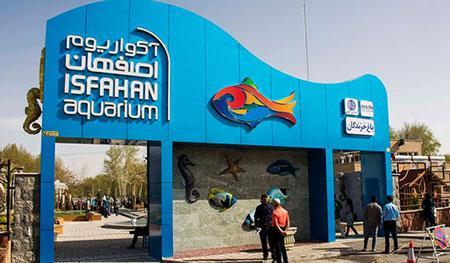 تصاویری زیبا از آکواریوم ماهی در شهر اصفهان