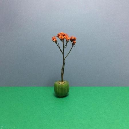 ساختن شکل های هنری و زیبا با استفاده از میوه