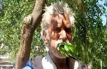 مردی که غذایش شاخه و بوته درختان است (+تصاویر)