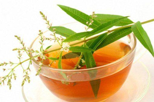 فواید خواندنی گیاه به لیمو (خواص به لیمو)