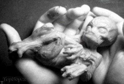 تصاویری ترسناک و چندش آور از موجودات فضایی (+18)