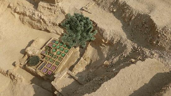 با باغ 4000 ساله در مصر بیشتر آشنا شوید