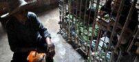مادر سنگ دلی که فرزندش را زندانی کرد (عکس)