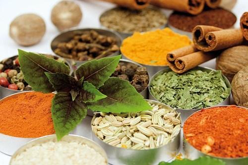 همه چیز در مورد گیاهان دارویی در بیابان
