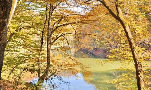 تصاویری از زیبایی های شگفت انگیز طبیعت مازندران