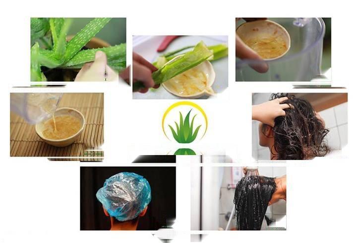 10 راهکار مفید درمان موهای خشک و وز