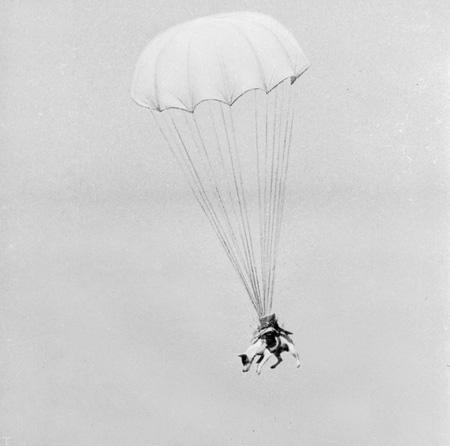 تصاویر خنده دار از جنگ جهانی دوم