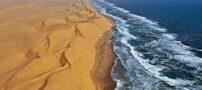 آشنایی با بیابان ساحلی زیبا در جنوب آفریقا