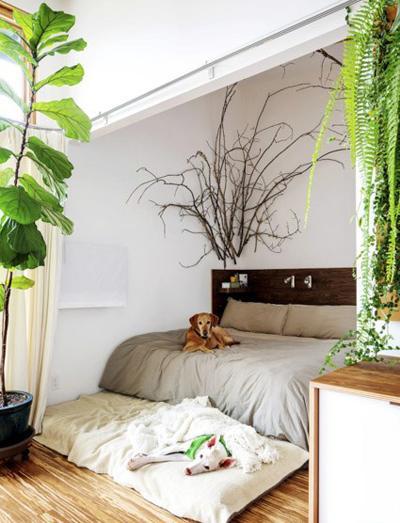 طراحی شیک و طبیعی اتاق خواب