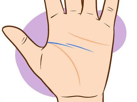 افشایی راز کف بینی دست (عکس)