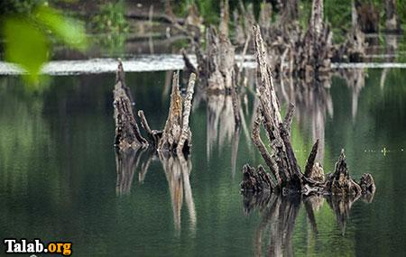 با دریاچه ممرز (تالاب ارواح) بیشتر آشنا شوید !