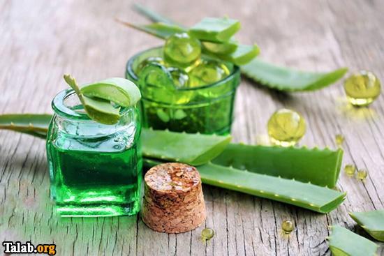 خواص فوق العاده گیاه آلوورا و جلوگیری از ریزش مو