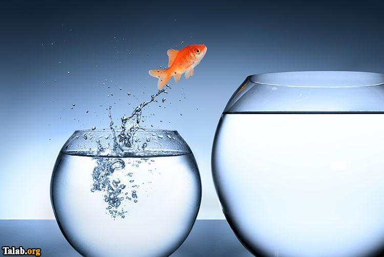 چگونه در زندگی خود تغییر بزرگی را انجام بدهیم تا موفق شویم ؟
