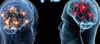 بازده مفید مغز مردان تا 2 بعد از ظهر است