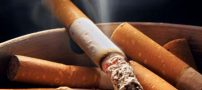 آمار مصرف دخانیات بین آقایان و خانم ها