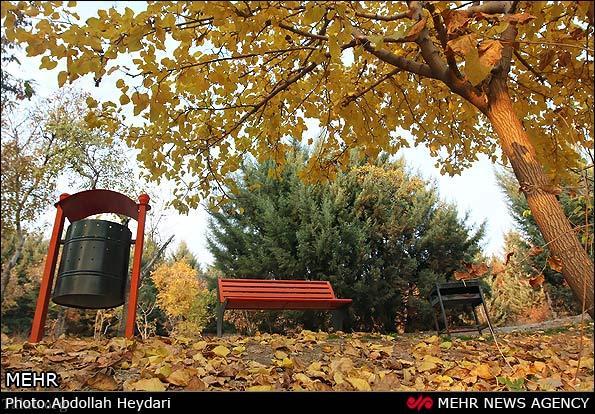تصاویری از درختان و پارک های پاییزی در پایتخت